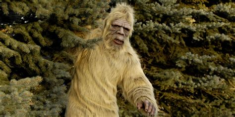 Man shoots at someone he mistook for Bigfoot because 'if I