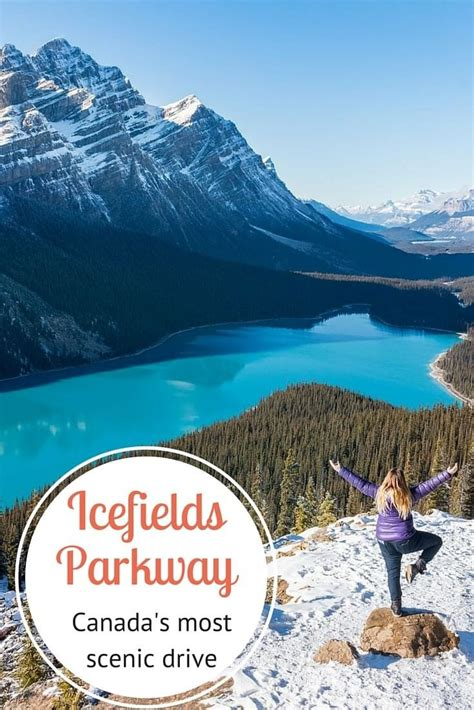 5 Tips for Driving the Icefields Parkway in Canada