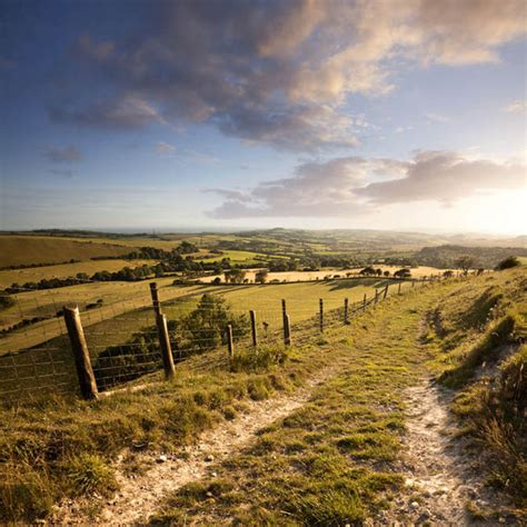 Goodbye England's green and pleasant land - Immigration