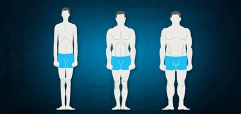 According to the doshas involved these body types can be